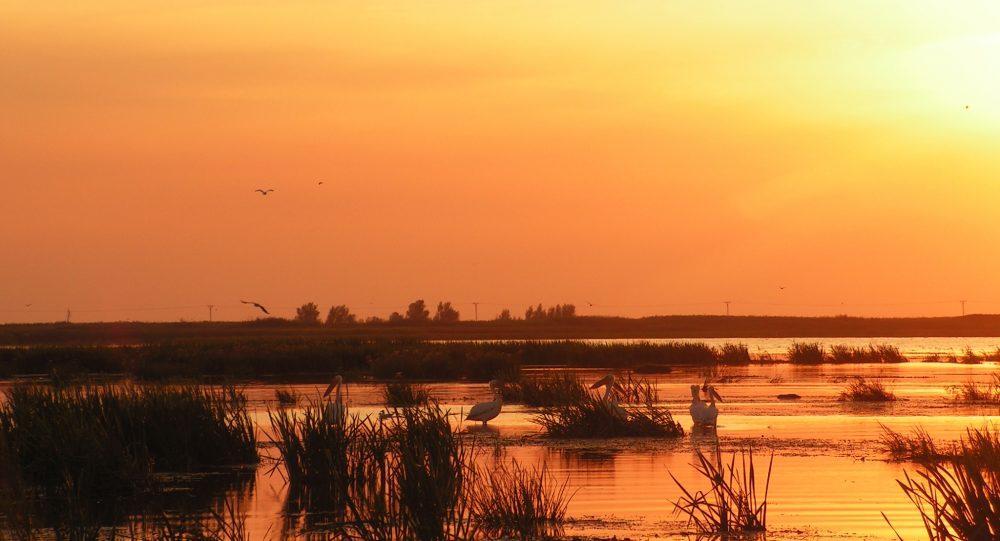 Delta Dunării – O gură de rai la capătul pământului